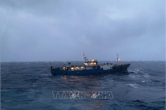 Disabled Russian cargo vessel towed ashore by Vietnamese navy