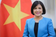 Vietnam chairs meeting of ASEAN Committee in Geneva