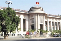 VN central bank responds to US labelling Vietnam as currency manipulator