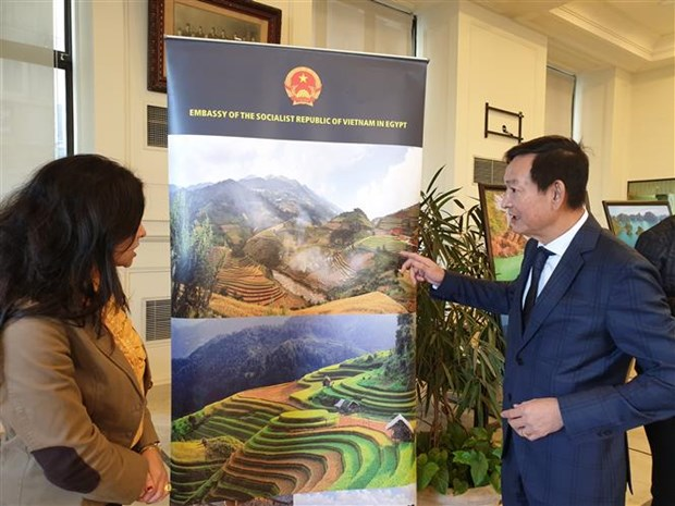 Vietnamese culture on show in Egypt's second-largest city hinh anh 1