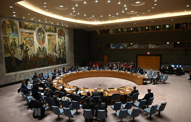 Vietnam reaffirms support for non-proliferation of nuclear weapons hinh anh 1