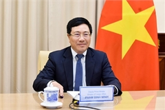 Diplomatic efforts affirm Vietnam's position in international arena amid COVID-19