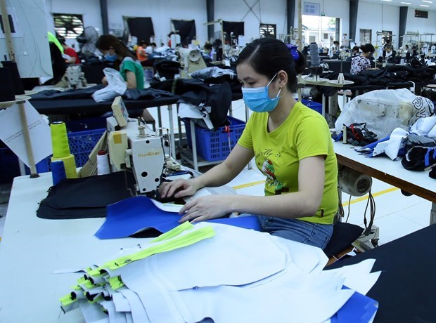 1.03 million people receive unemployment allowance this year hinh anh 1