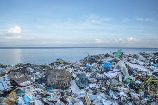Efforts made to reduce plastic waste in oceans hinh anh 2