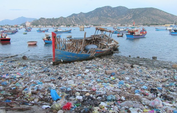 Efforts made to reduce plastic waste in oceans hinh anh 3