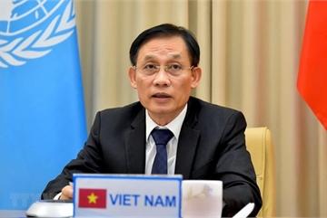 Vietnam prioritising enhanced cooperation between UN, regional organisations