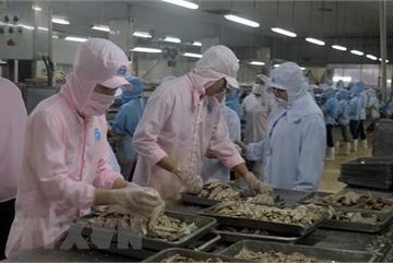 Vietnamese, US officials talk economic, trade issues