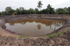 Saline intrusion in Mekong Delta forecast to be severe during Tet