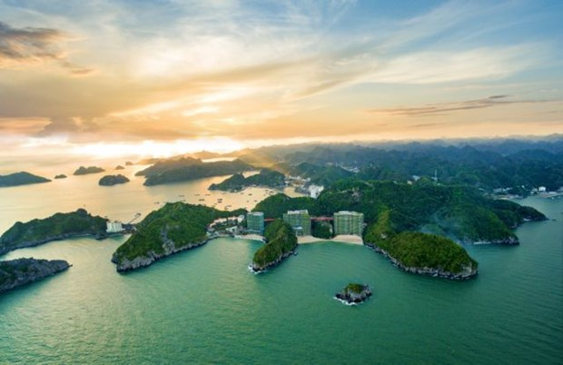 Travel agencies discuss overcoming pandemic's consequences hinh anh 1