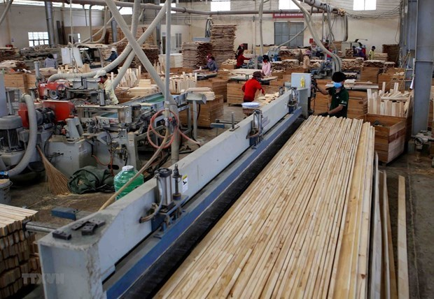 Vietnam aims to earn 14.5 billion USD from forestry exports hinh anh 1