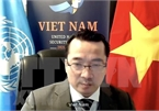 Vietnam calls for unity of int'l community in supporting Syria