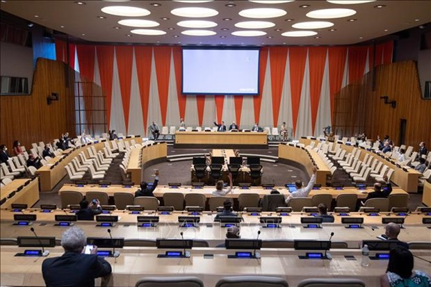 Vietnam supports democratic process in Somalia: Diplomat hinh anh 1