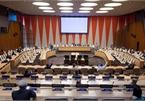 Vietnam supports democratic process in Somalia: Diplomat