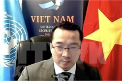 Vietnam backs upcoming elections in Palestine
