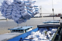 First batch of Vietnamese rice exported to UK under UKVFTA