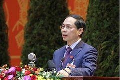 Diplomacy helps create favourable environment for national development: official