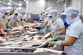 Vietnam contributes to WTO talks on fisheries subsidies