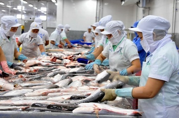 Vietnam contributes to WTO talks on fisheries subsidies hinh anh 1
