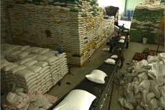 Rice exports enjoy opportunities for breakthrough in 2021