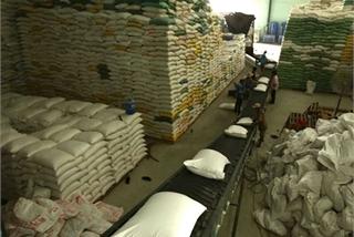Rice exports enjoy opportunities for breakthrough in 2021