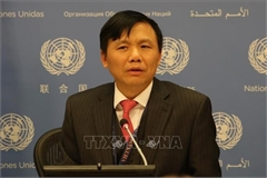 Vietnam shares development experience at UN session