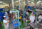 Vietnam's industrial export still relies on FDI sector