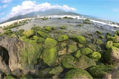 Nam O Reef, the green pearl of Da Nang