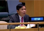 Vietnam supports UNMISS's activities: Ambassador