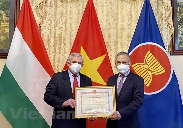 Hungary-Vietnam Friendship Association leaders honoured hinh anh 1