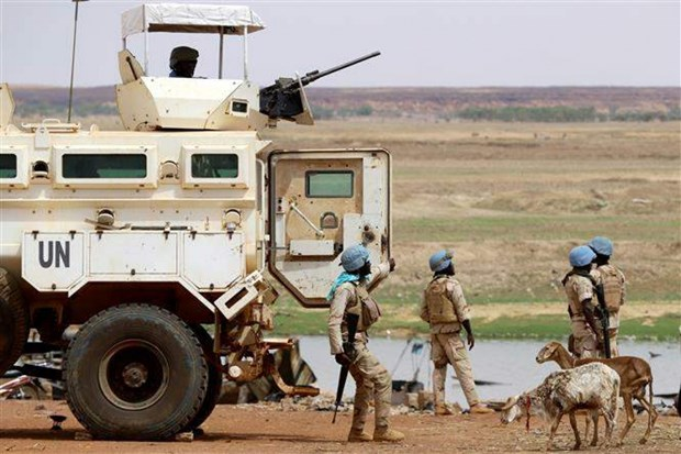 Vietnam calls for more efforts for peace in Mali hinh anh 1