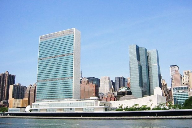 Third Vietnamese military officer to work at UN headquarters hinh anh 1