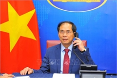 Vietnam, Brunei agree on maintaining joint committee on cooperation