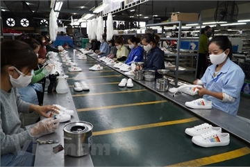 Key export sectors the target of M&As by foreign investors