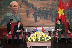 Vietnam forges defence ties with foreign countries