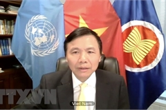 Vietnam voices concerns over escalating violence in Yemen
