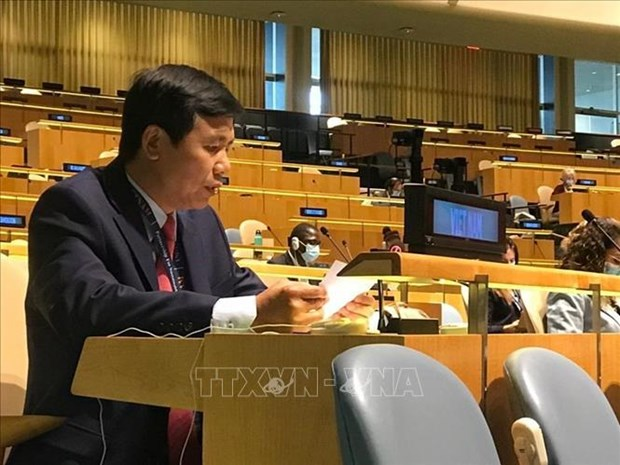Vietnam backs initiatives to promote Middle East peace process: ambassador hinh anh 1
