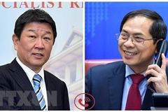 Foreign Ministers of Vietnam, Japan seek to promote extensive strategic partnership