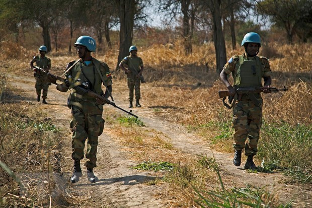 Vietnam urges peaceful solutions to Abyei issue hinh anh 1