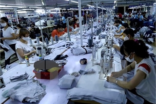 Export-import growth hits 10-year high