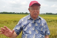 Japan's Order of the Rising Sun conferred upon Vietnamese scientist