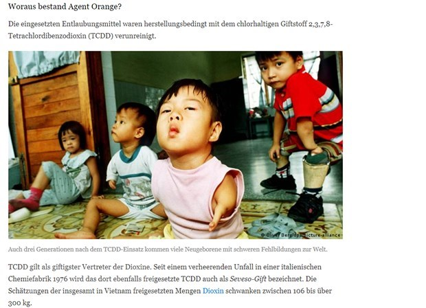 German media: plaintiffs and supporters of Tran To Nga's lawsuit not deterred hinh anh 2