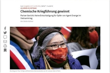 German media: plaintiffs and supporters of Tran To Nga's lawsuit not deterred