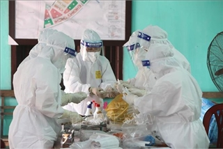 Vietnam sees 37 new domestic COVID-19 infections in 12 hours