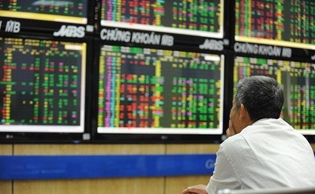 Stock market an attractive investment channel for local players hinh anh 1