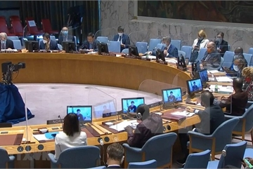 Vietnam calls for peace, stability in Golan Heights