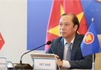 Vietnam attends ASEAN SOM, ExCom SEANWFZ's meeting