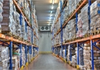 Cold storage market faces serious lack of capacity