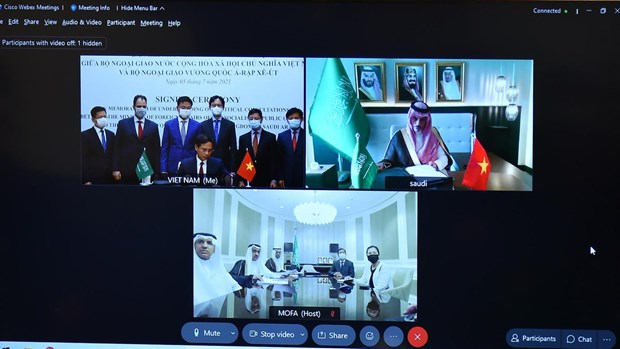 Vietnamese, Saudi Arabian foreign ministries sign MoU on political consultation hinh anh 1
