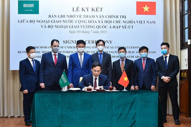 Vietnamese, Saudi Arabian foreign ministries sign MoU on political consultation hinh anh 2