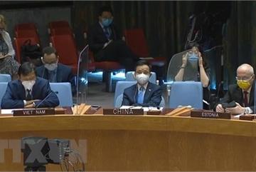 UNSC: Vietnam supports comprehensive political solution in Libya